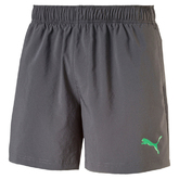 ESS WOVEN SHORTS 5`